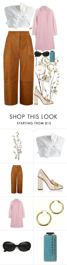 """FW."" by blueberry-bird97 ❤ liked on Polyvore featuring Pier 1 Imports, Chicwish, Whistles, Gucci, Sonia by Sonia Rykiel, Yves Saint Laurent and Lanvin"