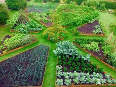 40 Inspiring Vegetable Garden Design for Your Backyard – Permaculture gardening … Potager Bio, Potager Garden, Veg Garden, Vegetable Garden Design, Garden Beds, Vegetable Gardening, Terraced Vegetable Garden, Raised Bed Garden Design, Garden Posts