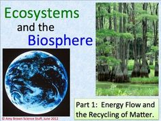 Topic:  Ecosystems and the Biosphere Part 1 - Energy Flow Through the Biosphere and the Recycling of Matter.   76-slide PowerPoint with Notes for Teacher and Student.