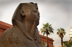 Sphinx Statue of Pharaoh Outside The Museum of Egyptian Antiquities, Cairo, Egypt (Copyright Dave Halley 2010)
