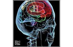 This is my brain on hockey! Montreal Canadiens, Hockey Teams, Gallery, Packers, Kids Rooms, Comme, Brain, Fan Art, Deco