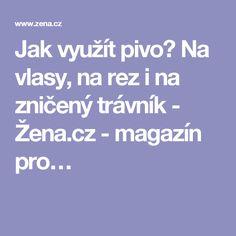 Jak využít pivo? Na vlasy, na rez i na zničený trávník - Žena.cz - magazín pro…