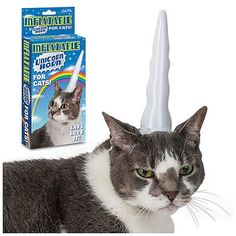 Inflatable Unicorn Horn Cat Hat.  I need to buy this for my cat.