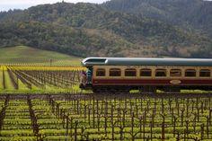 Take a train from San Francisco to the Napa Valley. Visit vineyards and enjoy a fantastic seasonally inspired menu.