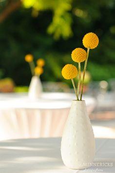 Yellow & Gray Wedding, Craspedia Centerpiece  http://significanteventsoftexas.com/