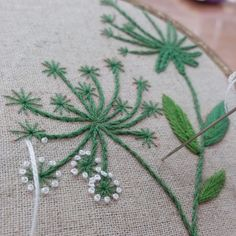 Wonderful Ribbon Embroidery Flowers by Hand Ideas. Enchanting Ribbon Embroidery Flowers by Hand Ideas. French Knot Embroidery, Crewel Embroidery Kits, Embroidery Letters, Embroidery Works, Learn Embroidery, Silk Ribbon Embroidery, Hand Embroidery Patterns, Flower Embroidery, Embroidery Supplies
