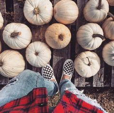 Fall Faves  # You're