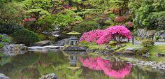 Seattle Japanese Garden | Home