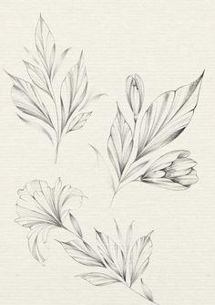 Flower Tattoo Drawings, Tattoo Sketches, Flower Tattoos, Mini Tattoos, Small Tattoos, Henna Tattoo Hand, Plant Tattoo, Tattoo Portfolio, Floral Drawing