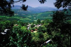 Magoebaskloof - South Africa | Flickr - Photo Sharing!