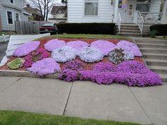 plantes couvre sol fleuries pour talus ou jardinet en pente