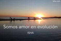 Somos Amor en evolución. Citas Isha Judd