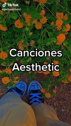 Good Vibe Songs, Mood Songs, Music Mood, Music Aesthetic, Aesthetic Videos, Instagram Music, Instagram And Snapchat, Instagram Blog, Instagram Story Filters