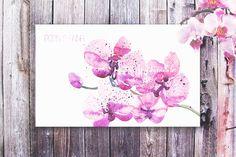 Watercolor Orchid Flowers by Spasibenko Art on @creativemarket