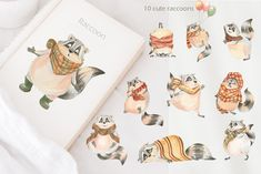 Cute Raccoon, Baby Stickers, Fall Bouquets, Fall Scarves, Funny Cute, Draw, Autumn, Creative, Raccoons