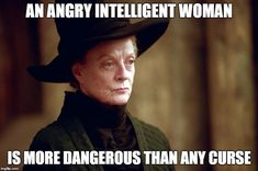 Hilarious Professor McGonagall memes and funny Harry Potter humor for book nerds. Harry Potter Jokes, Harry Potter Characters, Harry Potter World, History Memes, World History, Nasa History, Intelligent Women, Forever, Super Funny