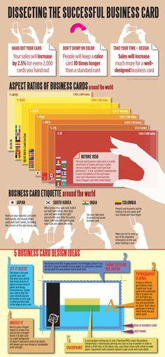 dissecting the succesful business card infographic