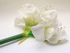 Umělá květina amarylis, bílý květ