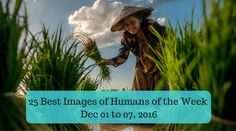 25 Best Images of Humans of the Week - Dec 01 to 07, 2016