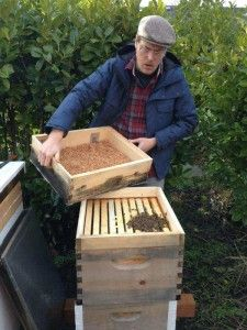 This week we talk to James Moore about his bees and his Swarmy Application. We talk about beekeeping in Portland, Oregon.