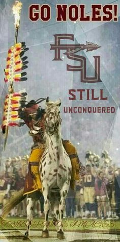 Unconquered Florida State Football, College Football Teams, Florida State University, Football Program, Florida State Seminoles, Florida Usa, Seminole Football, Football Stuff, Cubs Team