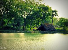 Under the green shade - Photography by Siva K Rao at touchtalent