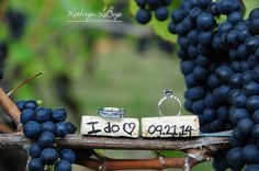 Got up at 7 in the morning to photograph the rings before the light got too bright. The rings kept falling in to the dirt as I tried to balance them on the corks. Upside, I got to eat some fresh grapes and create a fabulous image!  wedding photography, edgefield mcmenamins, wedding rings, Kathryn LeBoye Photography