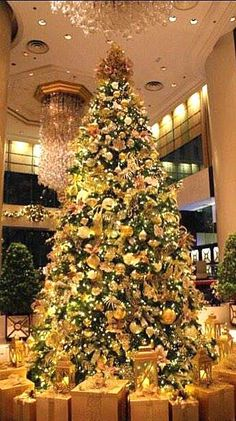 #Christmas tree at Island Shangri-La, Hong Kong