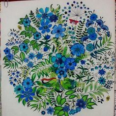 Johanna Basford   Colouring Gallery / ANI SEVER