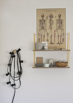 The skeleton system...This WILL be in my home somewhere via Alton.