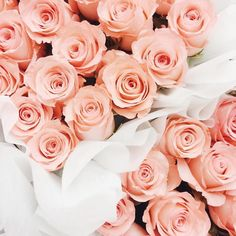 Every girl boss deserves her break. Loving these gorgeous roses - they are perfect for ANY day! :)