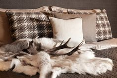 Tradition ins Schlafzimmer bringen.  Fotocredits: FINE Designers Guild, Throw Pillows, Blanket, Bed, Interior, Home Decor, Fabrics, Country, Chic