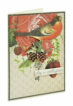 This card used products from the new Curiosity collection from KaiserCraft. Created by KaiserCraft design team.