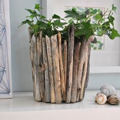 Make this gorgeous driftwood vase for next to nothing. Full photo tutorial