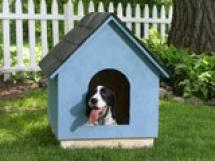 Free Dog House Plans - © DIY Network