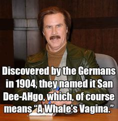 Ron Burgundy in Anchorman: The Legend of Ron Burgundy , 2004 | 13 Will Ferrell One-Liners We All Know And Love