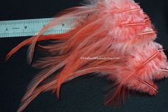 Hey, I found this really awesome Etsy listing at https://www.etsy.com/listing/91784720/salmon-color-craft-feathers-coral-peachy