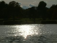 The sun casts its rays over the Serpentine in Hyde Park, London Hyde Park, It Cast, Celestial, London, Sunset, Water, Outdoor, Sunsets, Gripe Water