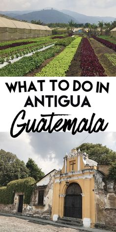 What To Do in Antigua, Guatemala | Sapphire & Elm Travel Co. #wanderlust
