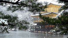 Winter. Kinkaku-ji Temple, Kyoto Japan 金閣寺  日本・京都 By Michael Chandler. More info and photos here: http://www.flickr.com/photos/michaelchandler/2251790131/