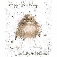Wrendale Designs Happy Birthday Greeting Card A Little Bird told me Happy Birthday Animals, Happy Birthday Images, Happy Birthday Greetings, Animal Birthday, Wrendale Designs, Happy Design, Happy B Day, Illustration, Animal Cards