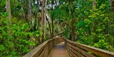 Best places to hike in Central Florida