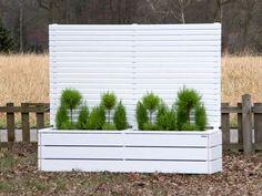 Pflanzkasten Holz lang mit Sichtschutz