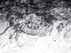 ¡Descubren en Capçanes un gran mural prehistórico! | Celler Capçanes