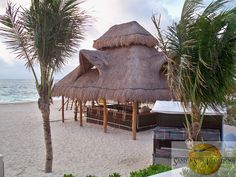 This is the Barracuda bar at Dreams Riviera Cancun Resort & Spa where you can enjoy the best cocktails! | Beach Bar