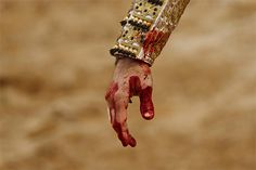 Spain's bullfighter Juan Jose Padilla's hand is stained with blood from a bull during a bullfight at La Muralla bullring in Brihuega, Spain, Saturday, April 6, 2013. Bullfighting is an ancient tradition in Spain and the season runs from March to October.(AP Photo/Daniel Ochoa de Olza)