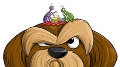 How to get rid of fleas If you have a pet, or even if you don't, you probably know that having fleas is not fun at all. They are annoying, tiny,