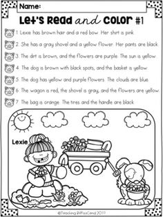Bar Graphs and Pictograph Activity with Class Survey and