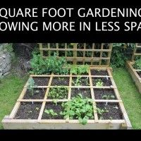 Grow a More Efficient Garden with Square Foot Gardening: http://www.iloveorganicgardens.com/square-foot-gardening-tips/