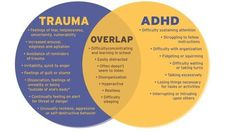 ADHD or Trauma? Some of the symptoms of ADHD and trauma overlap. This is a helpful diagram that identifies the symptoms of ADHD and the symptoms of trauma as well as those shared by both. Trauma Therapy, Therapy Tools, Play Therapy, Behavioral Therapy, Occupational Therapy, Speech Therapy, School Psychology, Psychology Facts, Counseling Psychology